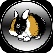 Rabbits for children